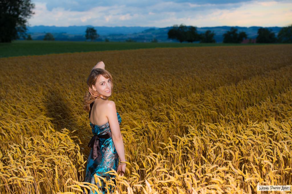 Kornfeld, Sommer, Fotografie, Shooting, Mike Weeks Fotograf